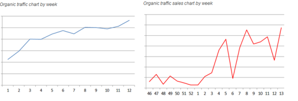 SEO Audit Sales Increase